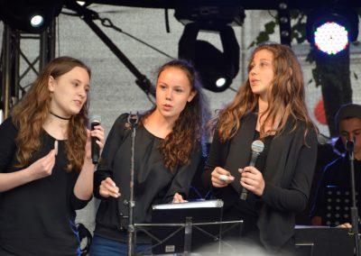 Altstadtfest-0617 (13)