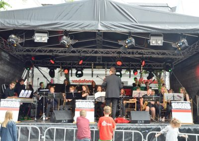 Altstadtfest-0617 (15)