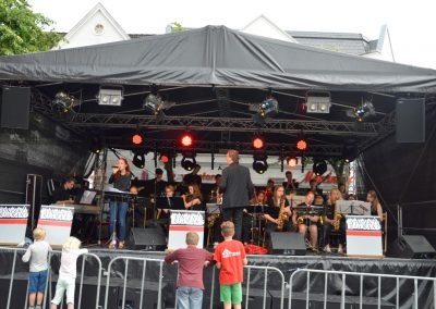 Altstadtfest-0617 (19)