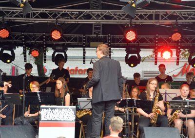 Altstadtfest-0617 (20)