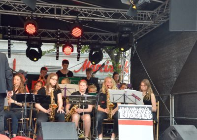 Altstadtfest-0617 (21)