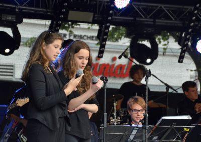 Altstadtfest-0617 (8)